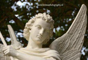engelenmed